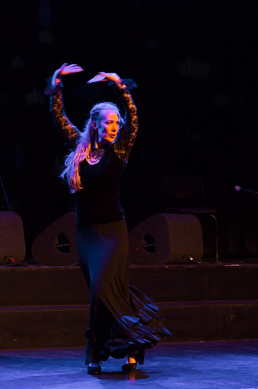 Flamenco Dans Project (Start 7 oktober)