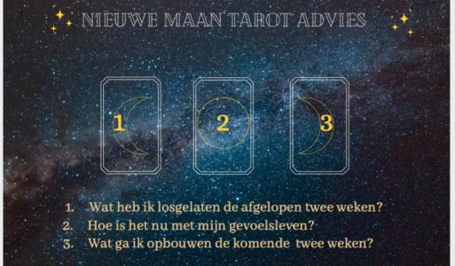 Nieuwe Maan Tarot Advies