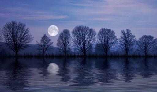 Maan Hysterie: zin en onzin van volle maan